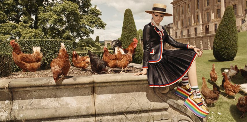 The new Gucci cruise ad campaign for 2017.