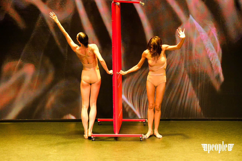 DArts Dance Project
